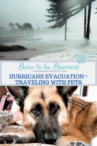 Hurricane Evacuation with pets