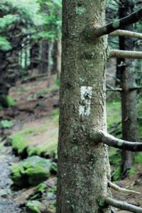 Appalachian trail markers