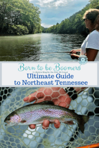 Fly fishing in Northeast Tennessee