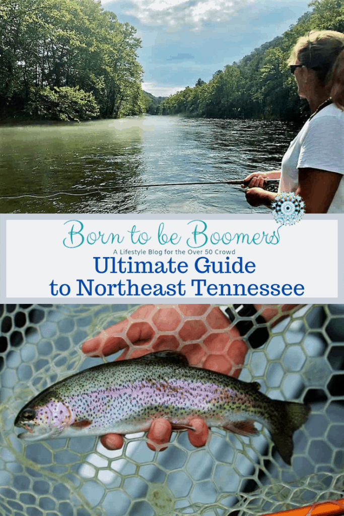 Fly fishing in Tennessee for Rainbow Trout