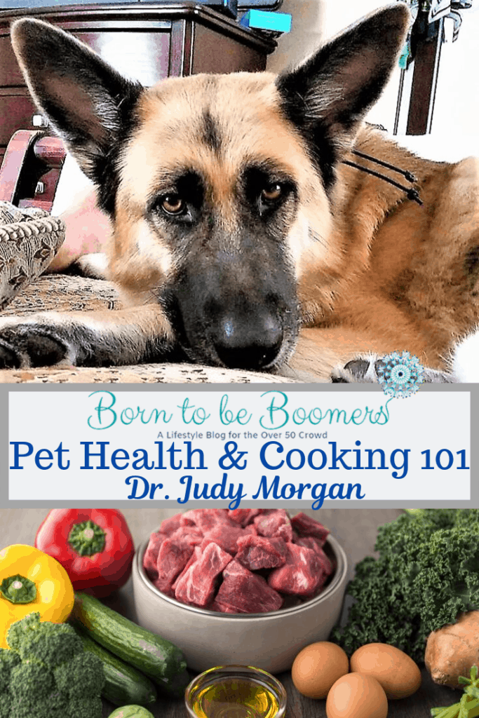 Pet Health and Cooking 101 diets for pets