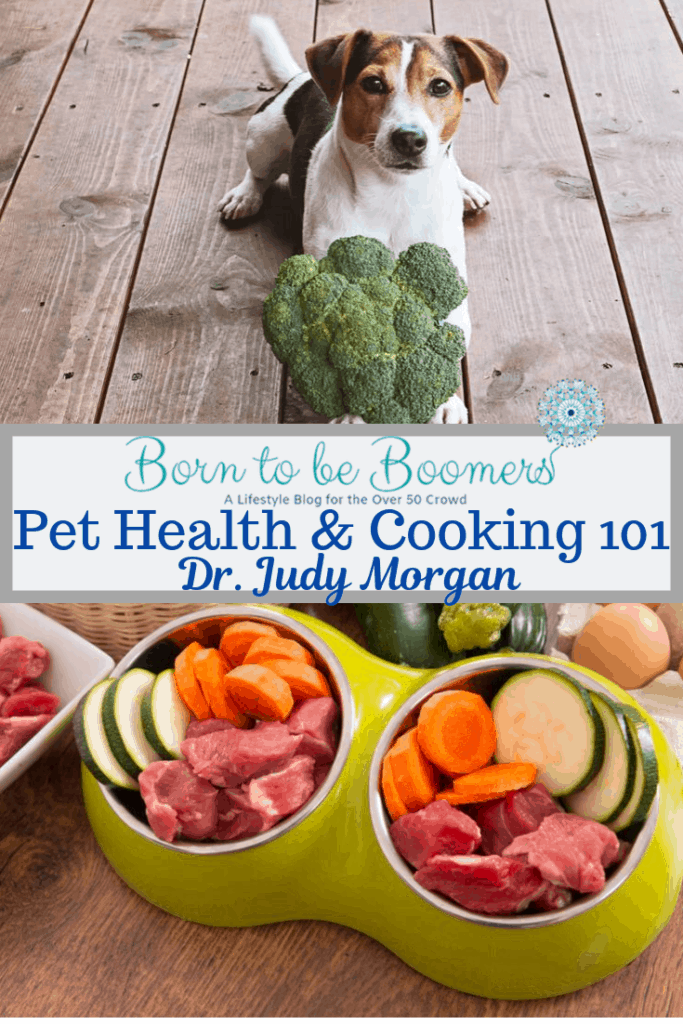 Pet Health and Cooking 101 natural pet diets