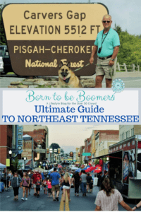 Ultimate Guide to NE Tennessee