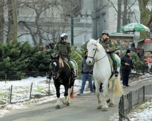 NYPD Mounted Police in Central Park